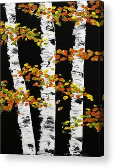 White Birch Trees In Fall On Black Background Painting Acrylic ...
