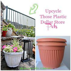 Update Those Plastic Dollar Planters