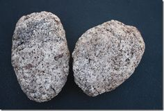 Dinosaur eggs and fossils