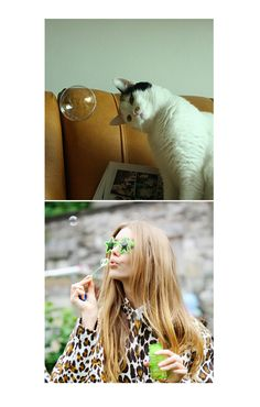 feline=fashion friday, 24th August: https://www.facebook.com/pages/Studio-Jane/412136338814172 #cats #meow #fashion #bubbles
