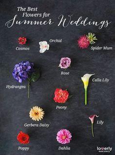 Wedding Tip: The best flowers for summer weddings! #summerweddings #flowers: