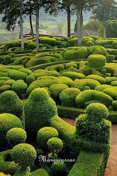 A Plus Photos: Garden Marqueyssac, Vézac in the Dordogne region of France