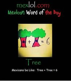 Mexican word of the day - Well is it...