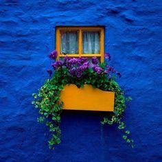 Casa azul,  #azul
