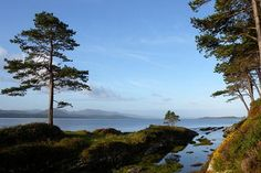 The 10 Best Ring of Kerry Tours, Trips & Tickets - Killarney | Viator