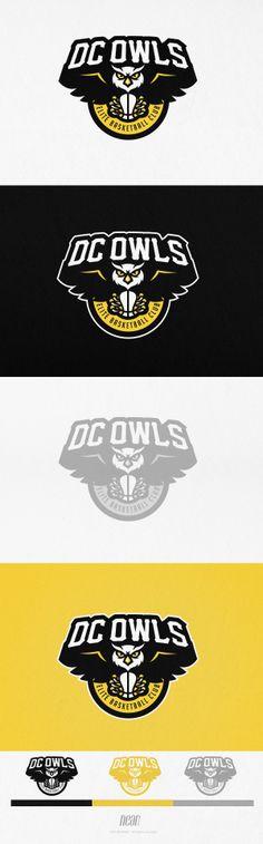 DC Owls by Tsvetoslav Lazarov, via Behance