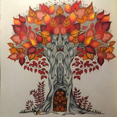 Johanna Basford | Picture by Jacqueline Morais Diniz | Colouring Gallery