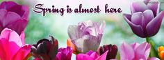 Spring Is Almost Here Facebook Cover coverlayout.com