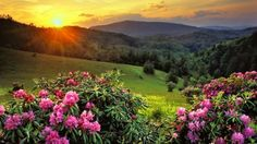 Spring Summer Sunset (60 pieces)