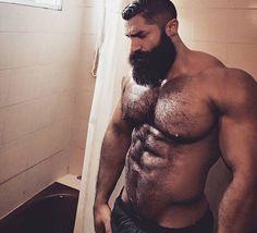 Hairy Men, Bears And Tattoos