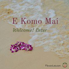 Hawaiian Flower Leis Shipped Nationwide Fresh From Hawaii Hawaiian Phrases, Hawaiian Art, Hawaiian Theme, Hawaiian Flowers, Hawaiian Sayings, Maui Vacation, Hawaii Travel, Hawaii Quotes, Aloha Quotes