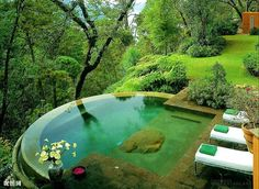 Infinity pool overlooking a woodland.. there would have to be fairies and wood sprites in a place like this.