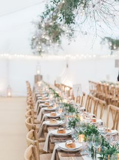 Deep green garlands of foliage like Ruscus, Olive and Rosemary, dotted with Kumquats and nightlights run along the length of the tables with long, Birch branches draped with Smylax and Ferns hang overhead with lots of globe nightlights.