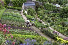 Inverewe Gardens in Highlands, Scotland. Photo by Ed O'Keeffe. www.edwud.com