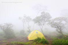 Yellow Tent on Pos 2 Pendakian Merbabu