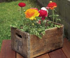 Why oh why did I get rid of all my old wooden orange boxes? I used to have a bunch of them...this is so cute!