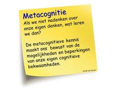 Metacognitie uitspraak Emiel StiBCO