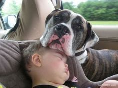 These are effing adorable. And I don't even like babies. 50 Toddlers Who Are Best Friends With Their Dogs