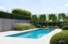 Moderne Pools, Outdoor Pool, Outdoor Decor, Barn Living, Garden Deco, Small Pools, Pool Decks, Farm Gardens, Pool Landscaping
