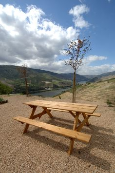 what about a great picnic, overlooking the vineyards and the Douro river