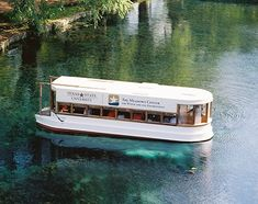 The Meadows Center Glass Bottom Boat Tours Mini Vacation, Vacation Ideas, Glass Bottom Boat, Visitors Bureau, Spring Lake, Texas Hill Country, Texas Travel, Boat Tours, Day Trips