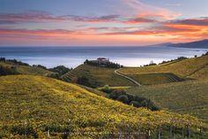 Golden Seas by Jontake . . on 500px