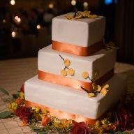 """aspen leaf cake, made by """"painting"""" real aspen leaves Vail Mountain, Aspen Leaf, Outdoor Ceremony, Custom Cakes, Beautiful Cakes, Wedding Cakes, Colorado, Restaurant, Desserts"""