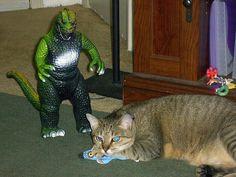 Godzilla threatens Fat Cat.   Fat Cat could care less.     Nice picture.I love pets!Check out this awesome website about pet  lovers like us: http://WeLovePets.fastprofitpages.com/?id=win44