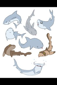 Cute sharks make me happy