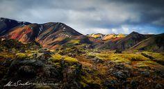 Ochre & Moss Iceland