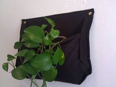 DIY version of Woolly pockets, a company who makes indoor wall planters made out of recycled water bottles.