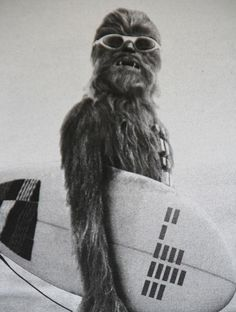 Chewie on holiday