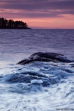 Dawn, Uutela, Helsinki, Finland.  Photo: Rob Orthen via Flickr.