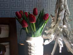 Primavera a chegar!
