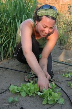 Alex Dryer has lived in a half dozen countries working with communities to find sustainable solutions to hunger and poverty through an ecological based approach to agriculture.