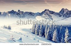 Winter Stock Photos, Images, & Pictures | Shutterstock