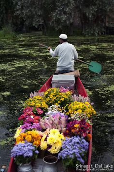 Beautiful lake with scenic views, floating garden with colorful flowers, lovely people with warm heart. A beautiful place that i would like to re-visit again.