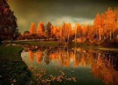 Image Search Results for fall beautiy