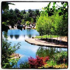 LOVE MELT - Mayfield Gardens, Oberon. Australia