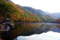청송 주왕산 주산지 Korea, River, Outdoor, Fall, South Korea, Outdoors, Autumn, Fall Season, Outdoor Games