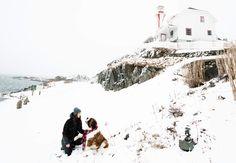St Bernards, Nova Scotia Duck Tolling, St Bernard Dogs, Snow Dogs, Dog Pin, Snow Scenes, Dog Boarding, Dogs Of The World, Lighthouse