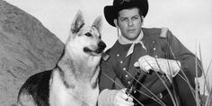 Florida Puppy Shoots Florida Man