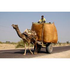 India – North « Nadler Photography Portfolio: Cultural & Travel Photographs