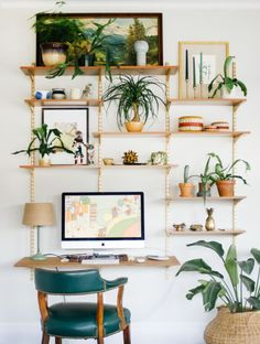 Awesome shelving. Plants on display!