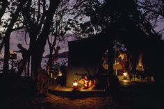 Campers prepare a meal beneath sea grape trees. Cinnamon Bay, Virgin Islands, 1968.Photograph by James L. Stanfield, National Geographic