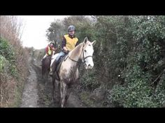 Vladimir rides Freddy the grey, next its Dara on Big Red, and finally James is managing the camera from on board. Riding Holiday, Ireland Holiday, Horse Ears, Horse Riding, See Through, Trekking, Horses, Holidays, Website