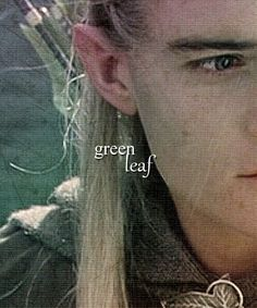 Legolas, Prince of Mirkwood.ok i've got to admit.i do fangirl over the way he fights. (Aragorn is by far awesomer though) Fellowship Of The Ring, Lord Of The Rings, Orlando Bloom, Aragorn, Lotr Legolas, Between Two Worlds, Into The West, Z Cam, Jrr Tolkien