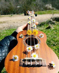 Music Instruments Photography Ukulele Ideas For 2019 Kala Ukulele, Ukulele Art, Ukulele Songs, Guitar Art, Guitar Tattoo, Guitar Tips, Music Guitar, Acoustic Guitar Chords, Ukulele Chords
