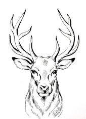 ORIGINAL deer ink drawing deer Illustration stag animal art line drawing wall art gift Natalia Eck Hirsch Illustration, Deer Illustration, Animal Illustrations, Ink Drawings, Animal Drawings, Easy Drawings, Drawing Animals, Deer Drawing Easy, Sketches Of Animals