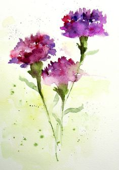 Carnations | Daily Practice Journal Size It took six trips f… | Flickr